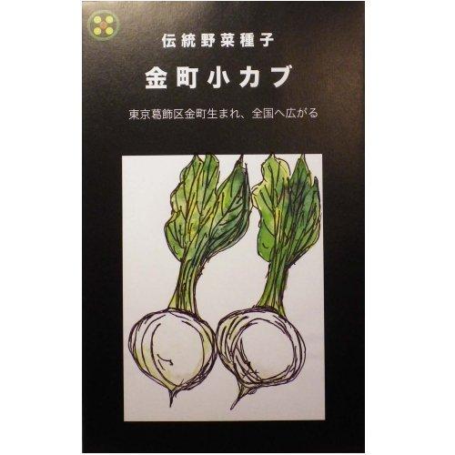 浜名農園 / 伝統野菜種子 金町小カブ