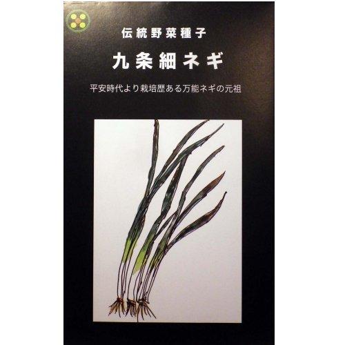 浜名農園 / 伝統野菜種子 九条細ネギ