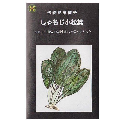 浜名農園 / 伝統野菜種子 しゃもじ小松菜