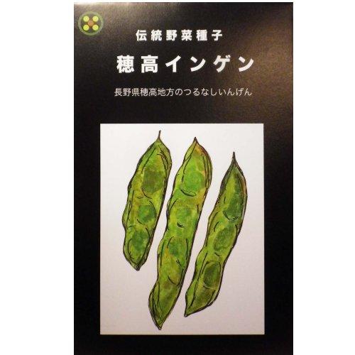 浜名農園 / 伝統野菜種子 穂高インゲン(つるなし)