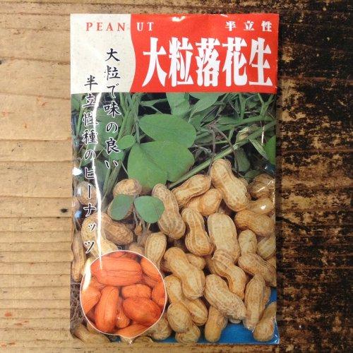 浜名農園 / 伝統野菜種子 大粒落花生(半立性)