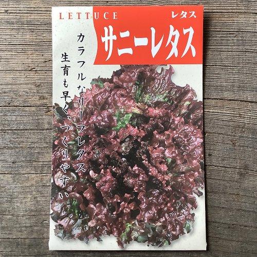 浜名農園 / 伝統野菜種子 サニーレタス