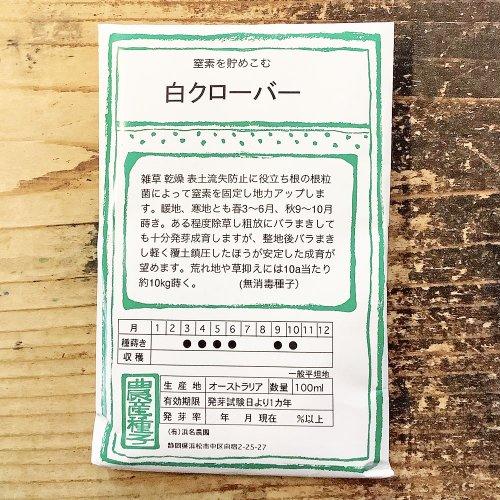 浜名農園 / 伝統野菜種子 白クローバー