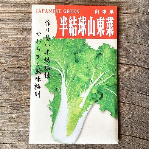 浜名農園 / 伝統野菜種子 半結球山東菜
