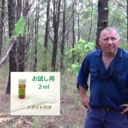 アボリジニの伝承 特許取得蒸留法で48時間抽出・世界唯一の生産者(商標: KAKADU BLUE)深みある木の香り 真正ブルーサイプレス精油2ml (メール便可)2019年3月産