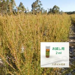 爽やかさと甘さの香り成分の調和に魅せられる アロマ香水に 無農薬フラゴニア精油2ml  ( メール便可)2019年12月産