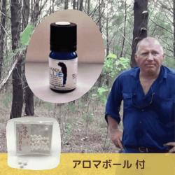 【SALE】アボリジニの伝承 特許取得蒸留法で48時間抽出 (商標:KAKADU BLUE)深みある森の香り 真正ブルーサイプレス精油5ml (メール便可)2019年3月産  アロマボール付