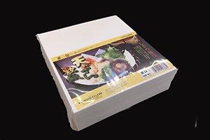 天ぷら敷紙 並口 <br/>500枚入