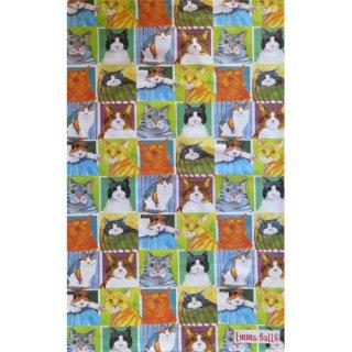 <b>オックスフォードタイム別注品</b><br>Emma Ball 【EBTT43】<br>Tea Towel ティータオル 100% コットン<br>BRITISH CAT LIFE