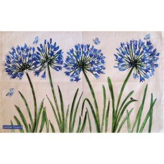 <br>Caroline Cleave 【EBTT44】<br>Tea Towel ティータオル 100% コットン<br>Agapanthus