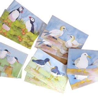 <br>Emma Ball 【EBMCP46】<br>Note Card カードセット<br>10枚 封筒付 Seabirds