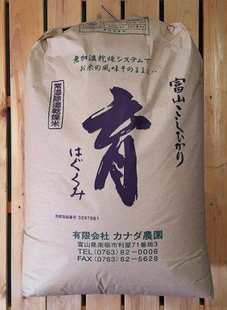 こしひかり育(玄米) 30kg