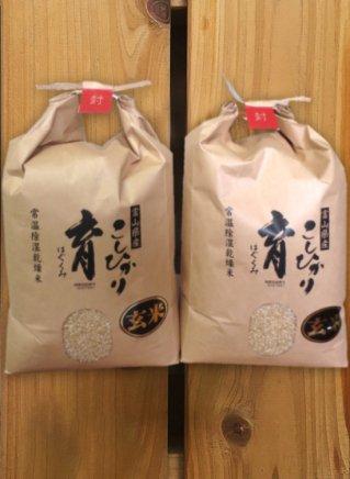 こしひかり育(玄米) 10kg(5kg×2袋)