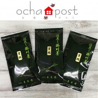 王城100g 3袋セット 【深蒸し掛川茶/お茶ポスト商品・同梱不可】