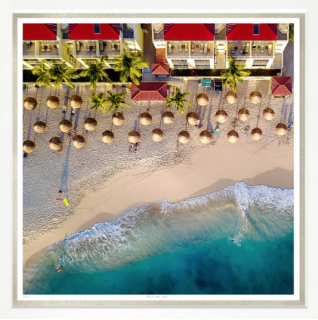 <img class='new_mark_img1' src='https://img.shop-pro.jp/img/new/icons61.gif' style='border:none;display:inline;margin:0px;padding:0px;width:auto;' />TROW BRIDGE Parasol Palm Beach