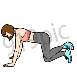 エクササイズをする女性 ポーズ (ヨガ、体操、ストレッチ、健康、美容)