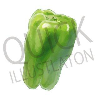 ピーマン イラスト(野菜、食べ物、植物、食)
