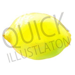 レモン イラスト(果物野、食べ物、植物、食、フルーツ、檸檬)
