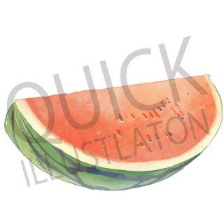 スイカ イラスト(果物野、食べ物、植物、食、フルーツ、すいか)