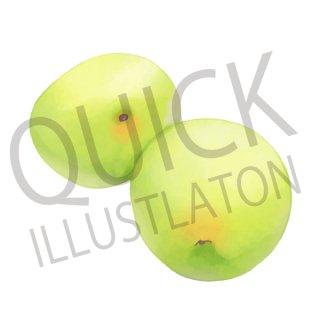 梅 イラスト(食べ物、植物、食、木の実、フルーツ、果、うめ、ウメ)
