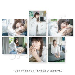 IDOL FILE Vol.21 ランダムポストカード[渚カオリ 純情のアフィリア]