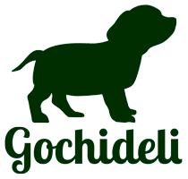手作りごちそう犬ごはん〈ごちでり〉 手作り無添加ドッグフードの専門店