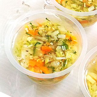 《無添加手作り》四季を感じる彩り野菜のゼリー寄せ/愛犬のヘルシー野菜とスープ