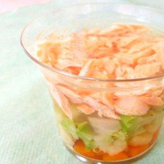 《無添加手作り》鮭と有機野菜のジュレ/栄養満点ごちそうテリーヌ