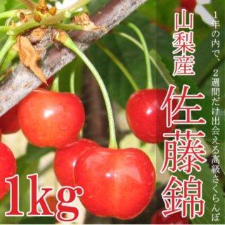 【予約販売】極上のサクランボ(佐藤錦)1Kg化粧箱ギフト