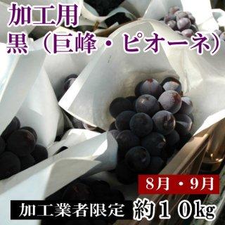 黒ぶどう(加工用山梨産巨峰・ピオーネ・藤稔)10�箱