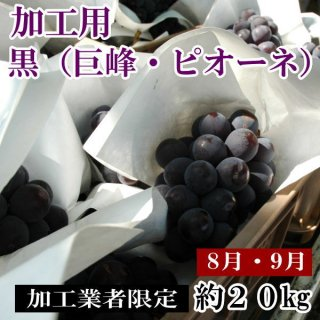 黒ぶどう(加工用山梨産巨峰・ピオーネ・藤稔)20�箱
