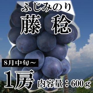 【クール便】藤稔(約600g)1房ギフト