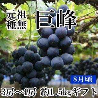 【クール便】元祖葡萄の王様 種無し巨峰(4房)約2Kギフト