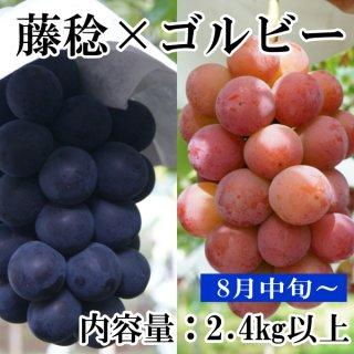 【クール便】藤稔とゴルビー 2.4Kギフト