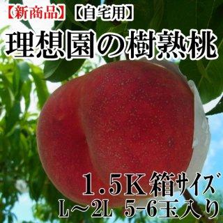 理想園の樹熟桃 1.5K箱5玉〜6玉入り(自宅用)