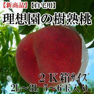 理想園の樹熟桃 2K箱5玉〜6玉入り(自宅用)