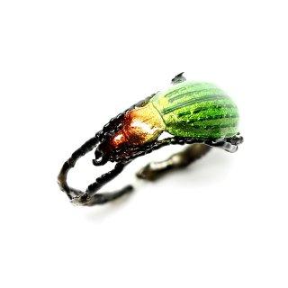 Nina【オオルリオサムシのリング緑】ネコポスは送料無料!