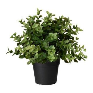 IKEA イケア FEJKA人工観葉植物 オレガノ z60375166