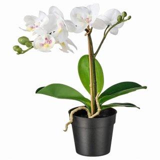 IKEA イケア 人工観葉植物 Orchid ホワイト 9x28cm m80294937 FEJKA