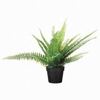 IKEA イケア 人工観葉植物 室内 屋外用 アビス 9x34cm m10433946 FEJKA