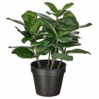 IKEA イケア 人工観葉植物 室内 屋外用 クルシア 12x32cm m80493343 FEJKA