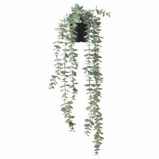 IKEA イケア 人工観葉植物 室内 屋外用 つり下げ型 ユーカリ 9x58cm m90466810 FEJKA