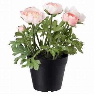 IKEA イケア 人工観葉植物 室内 屋外用 ラナンキュラス ピンク 12x25cm  m90395318 FEJKA