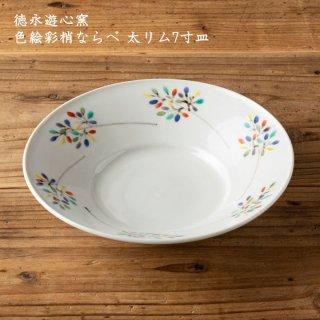 徳永遊心窯 色絵彩梢ならべ 太リム7寸皿