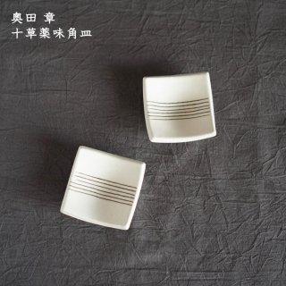 奥田章 十草薬味角皿