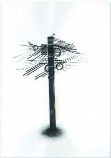L&D -電柱-
