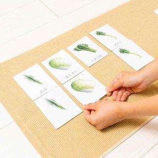 絵合わせのカード【葉菜類】《デジタルコンテンツ》
