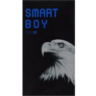 SMART BOY(スマート ボーイ)  12個入