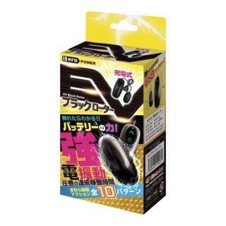 EVブラックローター