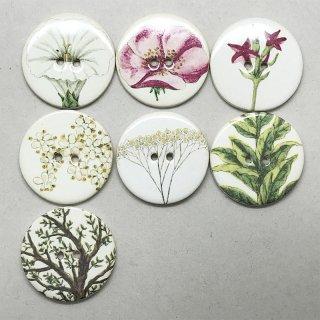 イギリス製 陶ボタン(植物シリーズ)